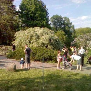 Минск, фестиваль в ботаническом саду