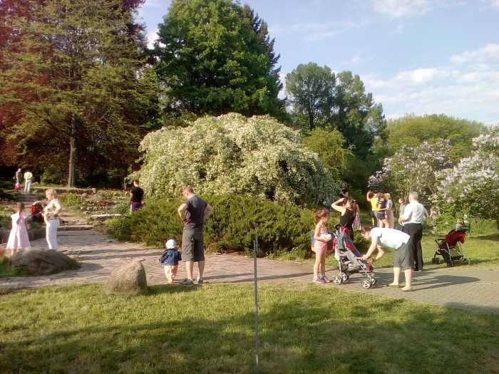 Минск, ботанический сад