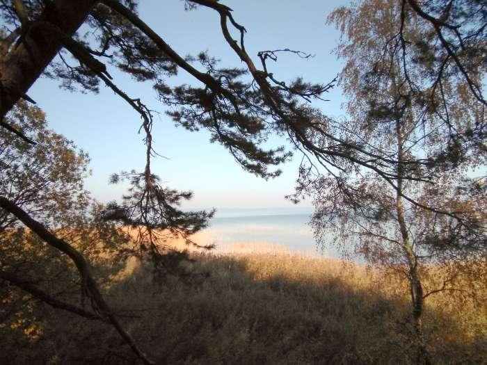 Озеро Нарочь